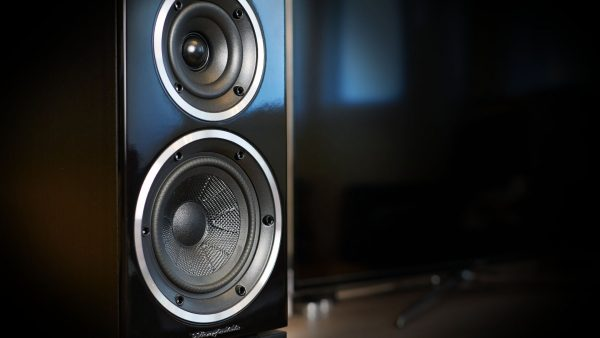 Wharfedale Diamond 220 – good fetch in 2020?